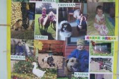 Lemmiklooma plakat