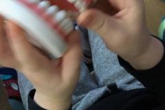 Hambakool põngerjates