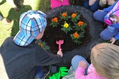 Muumid istutavad lilli